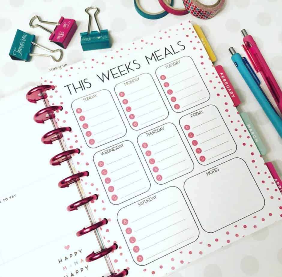 photo regarding Free Mini Happy Planner Printable Inserts identified as Joyful Planner 101 - Business Obsessed